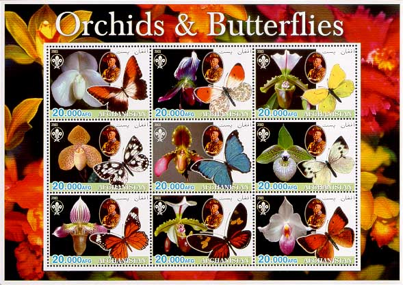 Afghanistan Orchids & Butterflies