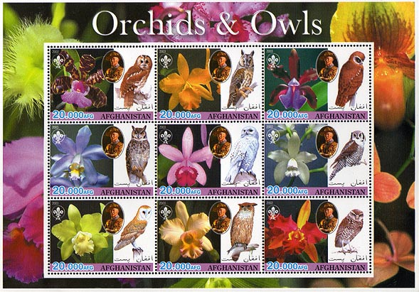 Afghanistan Orchids & Owls