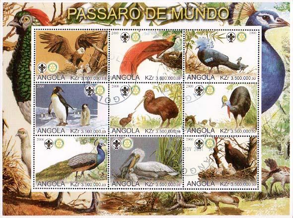 Angola Bird