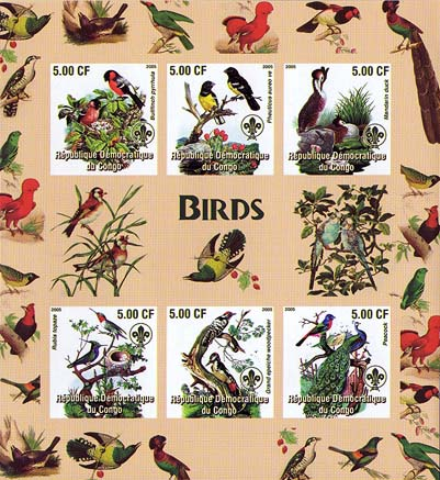 Birds Imperf