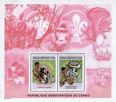 Congo Ape
