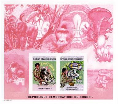 Congo Ape Imperf