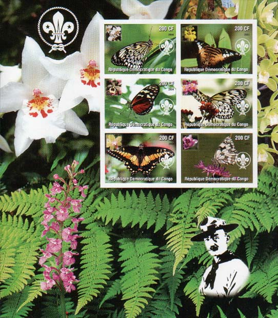 Congo Butterfly Imperf
