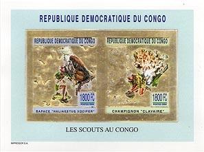 Congo Fungi & Bird Gold Pair Imperf