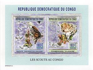 Congo Fungi & Bird Silver Pair