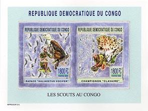 Congo Fungi & Bird Silver Pair Imperf