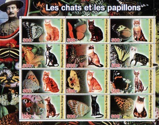 Congo Cat & Butterflies