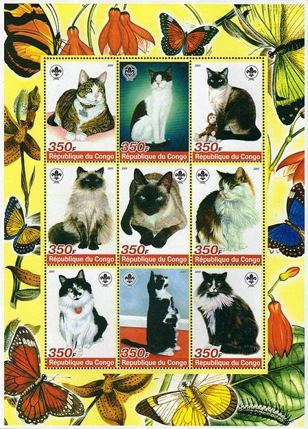 Congo Cats