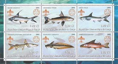 Congo Catfish