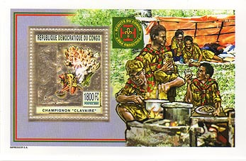 Congo Cooking Gold Foil