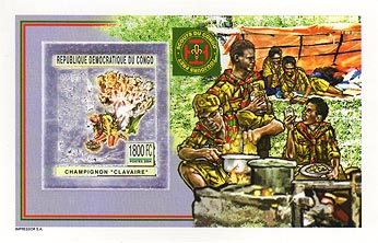 Congo Cooking Silver Foil Imperf