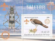 Congo Falcon 25