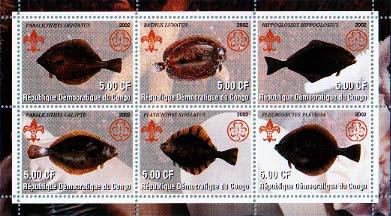 Congo Flounder