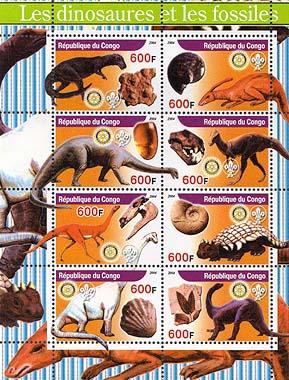 Congo Fossildinob