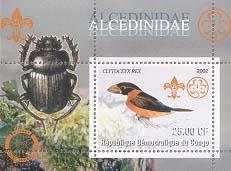 Congo Kingfisher 25
