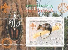 Congo Marsupial 25