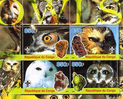 Congo Owls