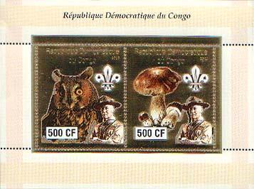 Congo Baden-Powell and Owls 500