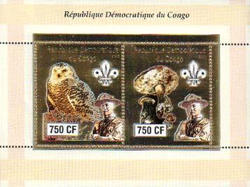 Congo Baden-Powell and Owls 750