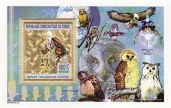 Congo Owl Gold Foil
