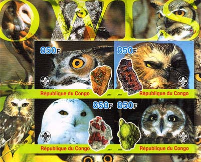 Congo Owls Imperf
