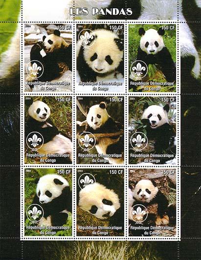 Congo Panda 2004