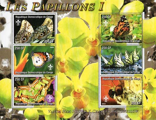 Congo Papillon 1