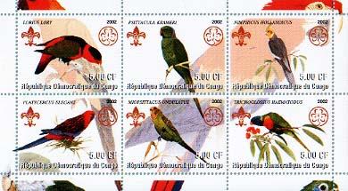 Congo Parrot