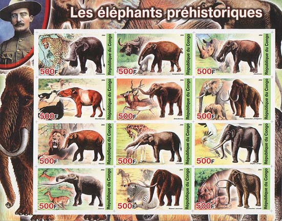 Congo Phelephant Imperf