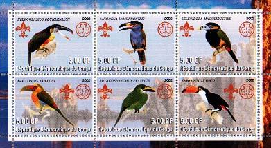 Congo Toucan