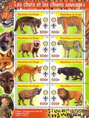 Congo Wild