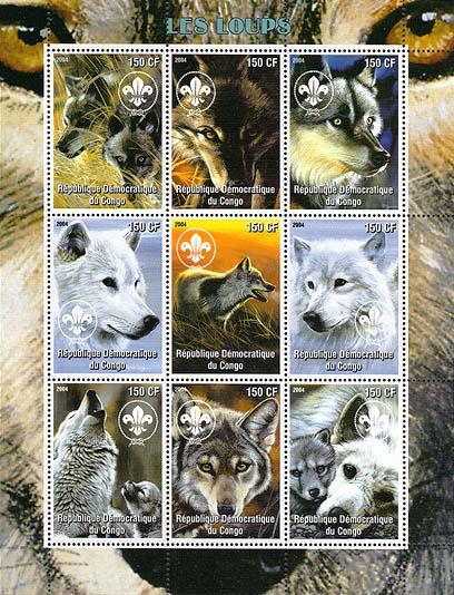 Congo Wolf